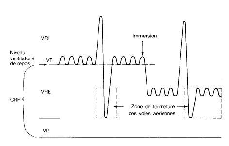 cycle ventilatoire